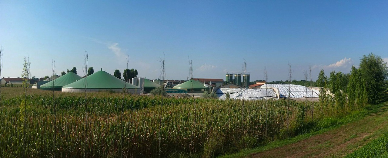 Global Biogas Plant Market: Turning Waste To Energy