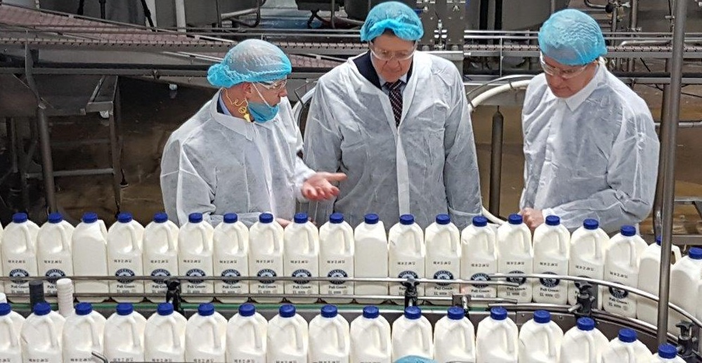 Thinking Out Of The Box Or Bottle: Innovative Milk Packaging