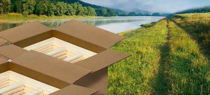 Green Packaging: A Step Towards Sustainable World