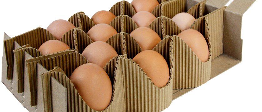 Creative And Green Packaging Is The Latest Trend In Global Egg Packaging Market